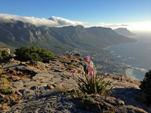 Overlooking Camps Bay from Lion's Head