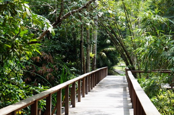 walkway to the beach, The Datai